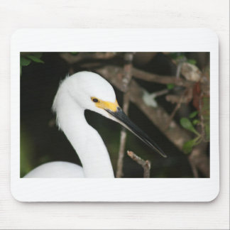 Snowy Egret Wading Bird Mouse Pad