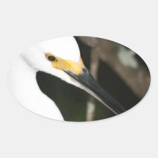 Snowy Egret Wading Bird Oval Sticker