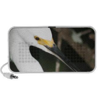 Snowy Egret Wading Bird Travel Speaker