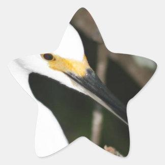 Snowy Egret Wading Bird Sticker