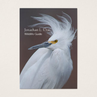 Snowy Egret Wildlife, Bird Guide, Ecologist Business Card