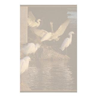Snowy Egrets at Dawn Stationery