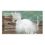 Snowy Egrets Business Cards