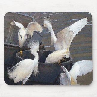 Snowy Egrets Mousepad