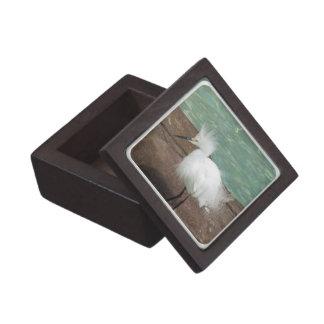 Snowy Egrets Premium Gift Box