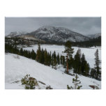 Snowy Ellery Lake California Winter Photography Poster
