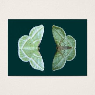 Snowy Emerald moth ~ ATC card