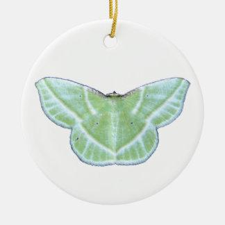 Snowy Emerald moth ~ ornament