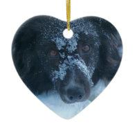Snowy Faced Border Collie Dog Ornament