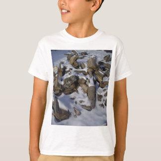 Snowy Fire Wood T-Shirt
