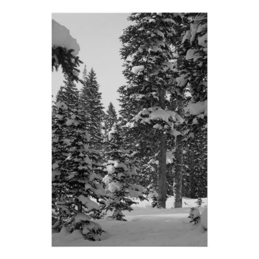 Snowy Forest Black and White Poster