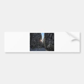 Snowy Forest Bumper Sticker