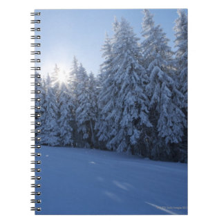 snowy forest in the mountain note books