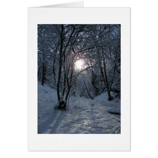 Snowy Forest Trail Card