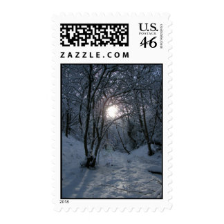 Snowy Forest Trail Stamp
