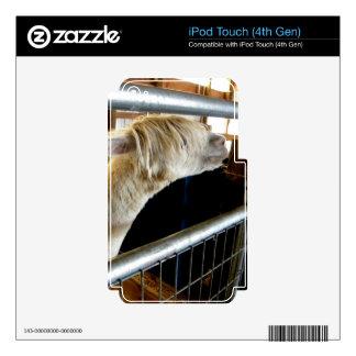 Snowy Guy II iPod Touch 4G Skin