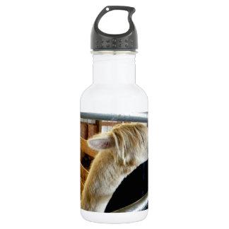 Snowy Guy II Stainless Steel Water Bottle