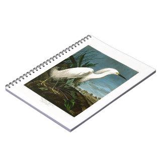 Snowy Heron White Egret Audubon Birds of America Spiral Notebook