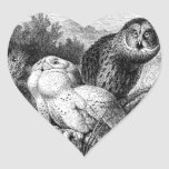 Snowy - Horned Owls Vintage Wood Engraving Heart Sticker