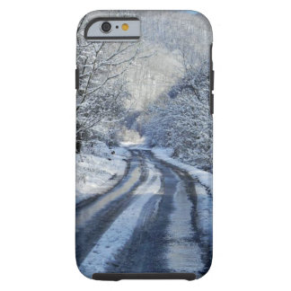 Snowy Iphone Case
