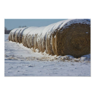 Snowy Kansas Country Hay Bales Photo Art