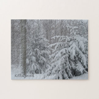 Snowy Killingworth Puzzle