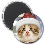 Snowy Kitten Christmas Magnet