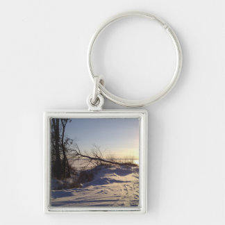 Snowy Lake View Keychain