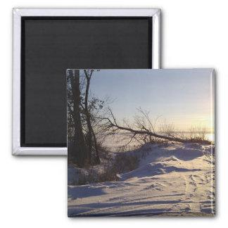Snowy Lake View Magnet