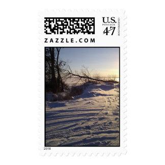 Snowy Lake View Postage