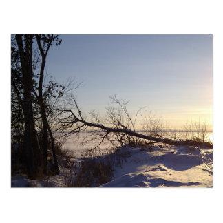 Snowy Lake View Postcards