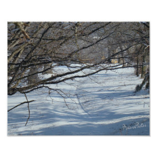 Snowy Lane-customize Poster