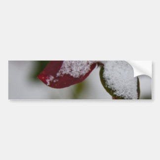 Snowy leaves bumper sticker
