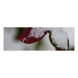 Snowy leaves business card templates
