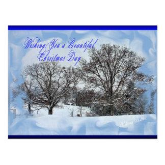 Snowy Makara Christmas-customize Postcard