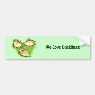 Snowy Mallard Ducklings Bumper Sticker