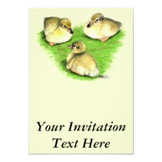 Snowy Mallard Ducklings Card