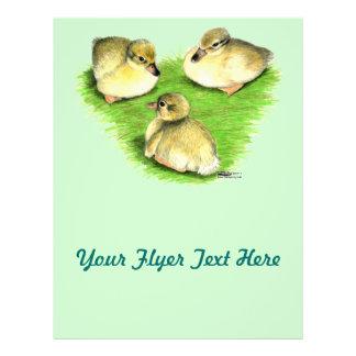 Snowy Mallard Ducklings Flyer