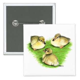 Snowy Mallard Ducklings Pins