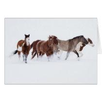 Snowy March II Horse Greeting Card