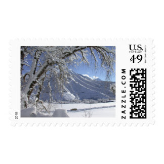 snowy mountain_06 stamps