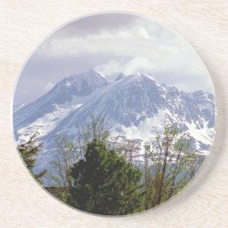 Snowy Mountain Coaster