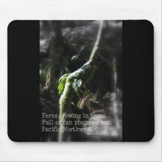 snowy Oregon ferns in trees 2 with haiku Mouse Pad