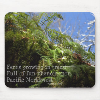 snowy Oregon ferns in trees with haiku Mouse Pad