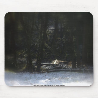 Snowy Oregon Forest 12 Mouse Pad