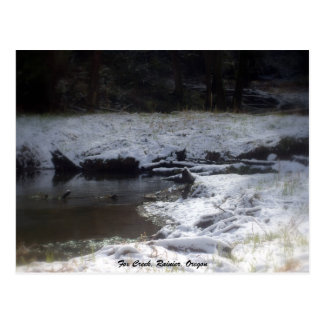 Snowy Oregon Forest, Fox Creek 2 Postcard