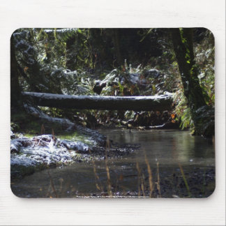 Snowy Oregon Forest, Fox Creek 5 Mouse Pad