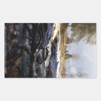 Snowy Oregon Forest, fox creek 6 Rectangular Sticker