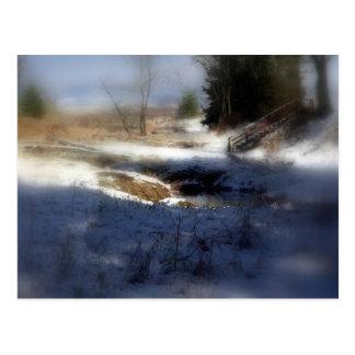 Snowy Oregon Forest, Fox Creek 7 Postcard
