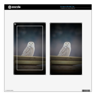 Snowy Owl_3308 Decals For Kindle Fire